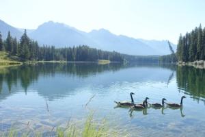 lake-2520641_640